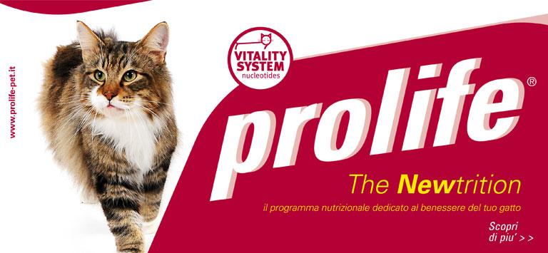 banner-prolife3