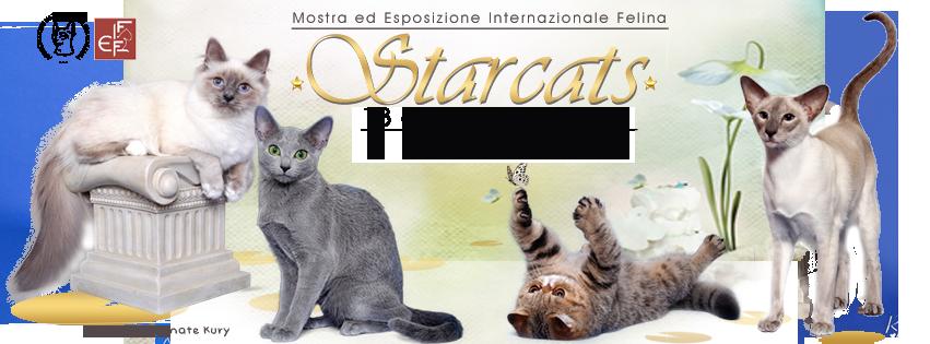Expo Felina Star Cats Show
